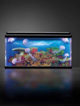 Senzorické akvárium s medúzami